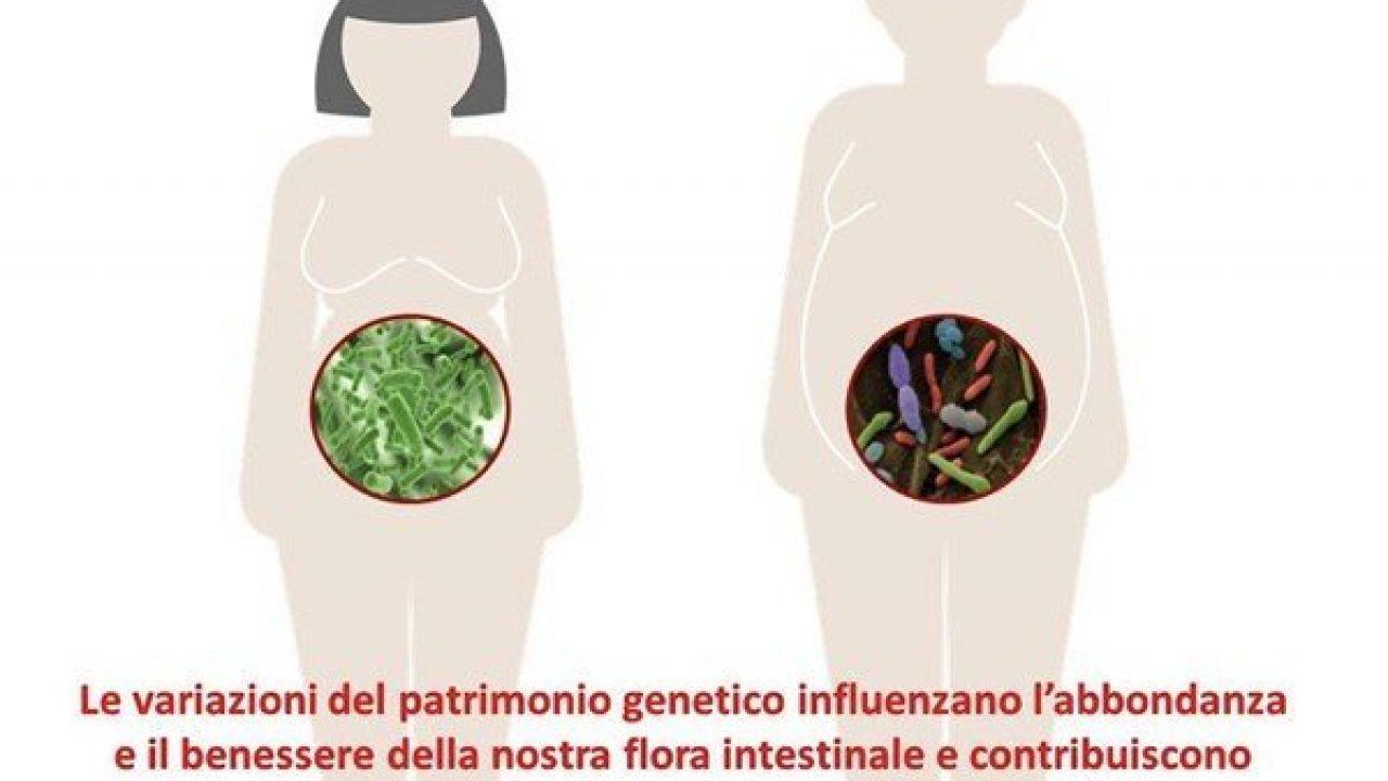 Peso corporeo e flora intestinale: scoperti nuovi intrecci ed influenze