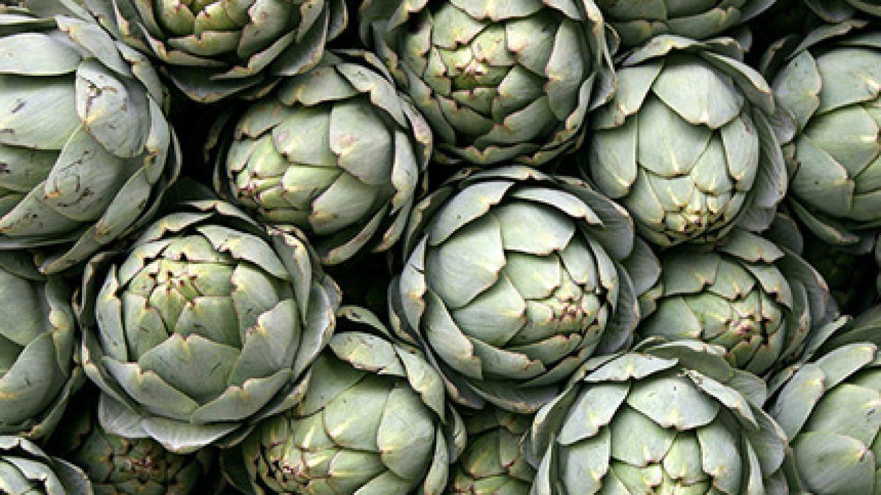 Il carciofo: depura il fegato, è diuretico e protegge i vasi dal deposito di grassi