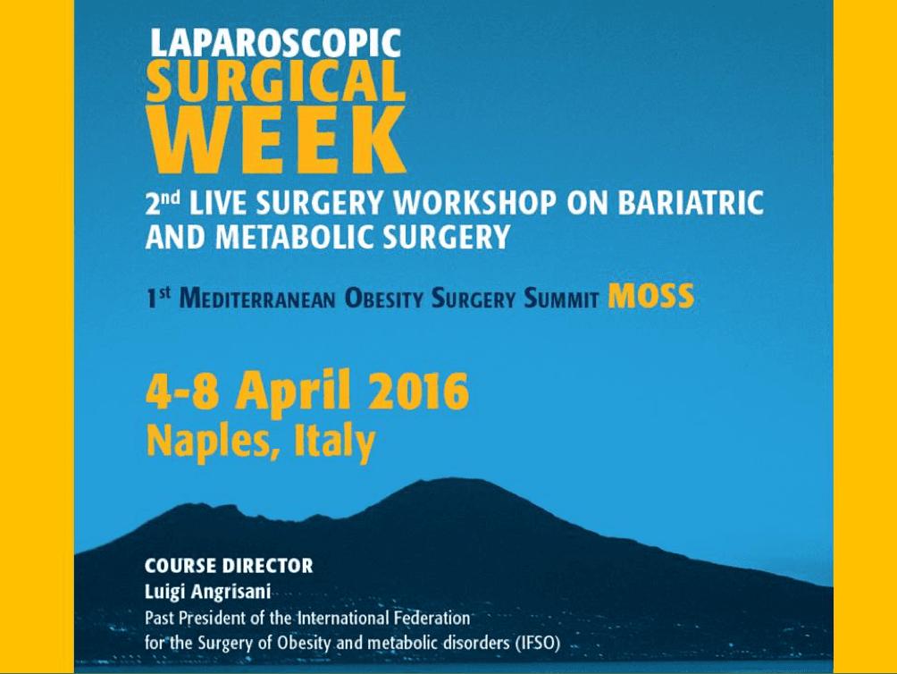 Mediterranean Obesity Surgery Summit