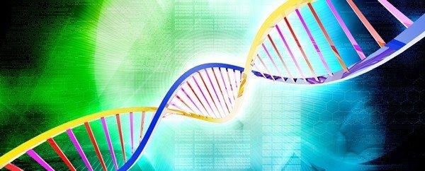 esiste-gene-predispone-ai-chili-di-troppo-2
