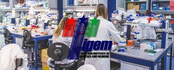 Istituto Telethon: nuove conferme sul gene che controlla l'attività fisica